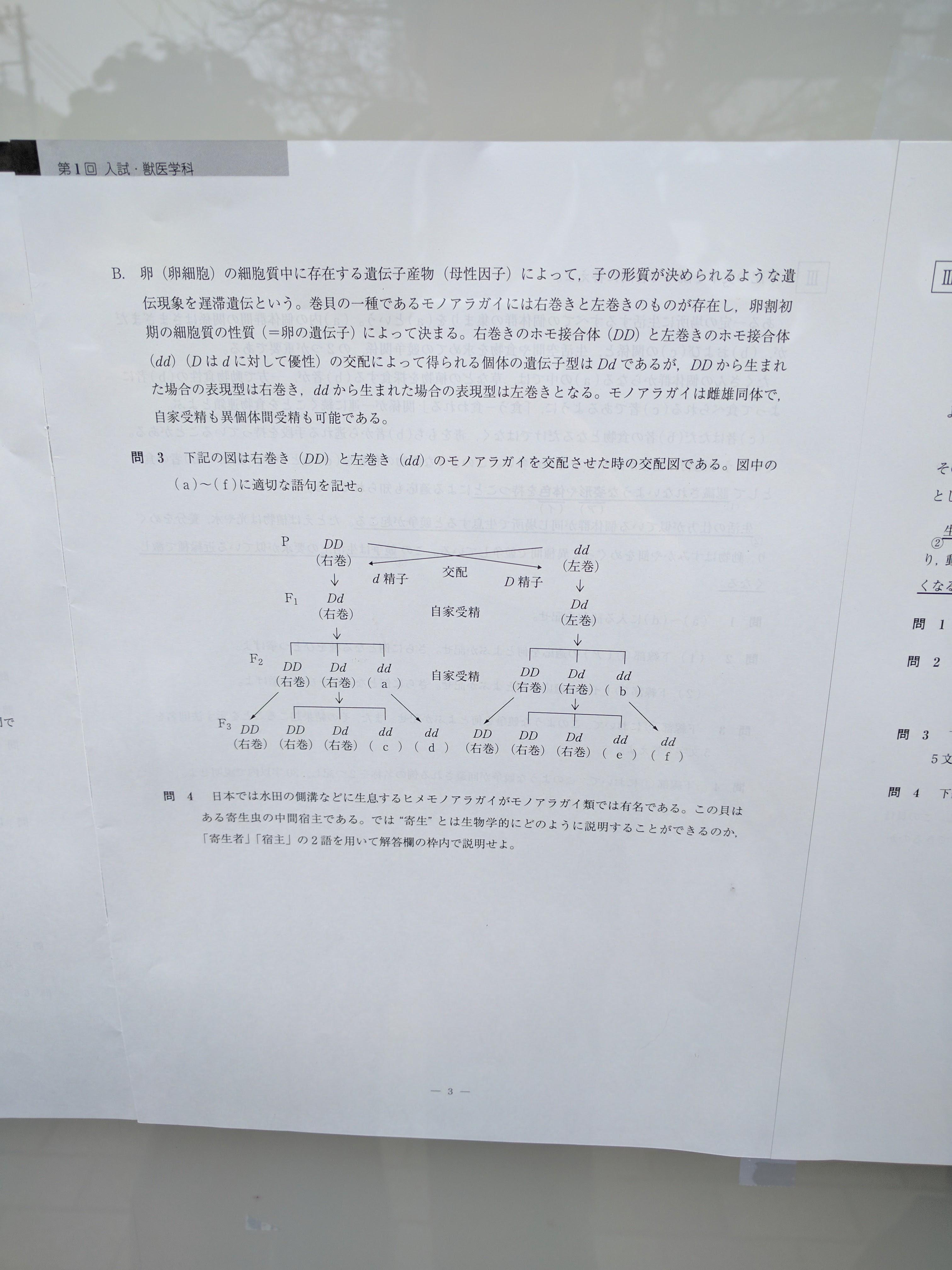 解答 速報 大学 龍谷